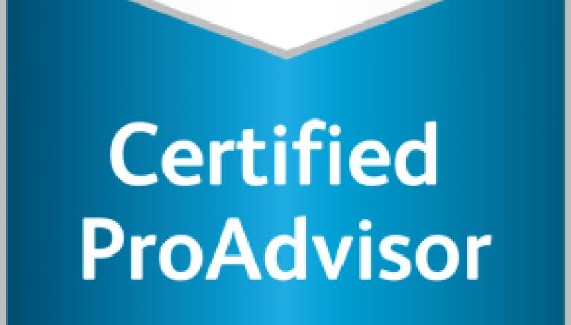 09-ProAdvisor-QBOPAP-291×497